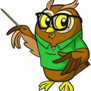 Owls FCMP